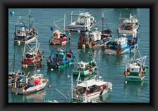 icone_bateaux_amarres